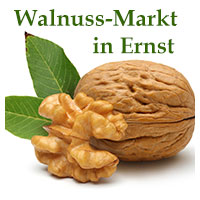 Walnussmarkt in Ernst