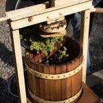 Weinlesetag im Weingut am 5. Oktober 2018