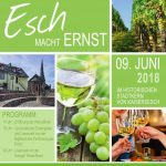 Esch macht Ernst am 9. Juni 2018