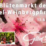 Blütenmarkt in Cochem